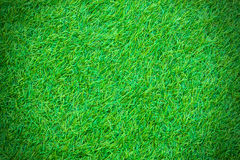 Green artificial turf pattern Royalty Free Stock Image
