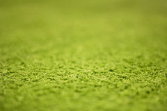 Green artificial turf pattern ,texture for background Royalty Free Stock Photo