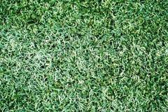 Green artificial turf stadium stock image