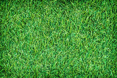 Green artificial turf texture for background Royalty Free Stock Photo