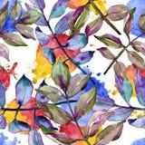 Green ash leaves. Leaf plant botanical garden floral foliage. Seamless background pattern. Fabric wallpaper print texture. Aquarelle leaf for background vector illustration