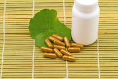 Green Asiatic Pennywort (Centella asiatica ) and yellow pill cap Stock Images