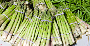 Green asparagus Stock Images