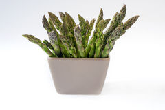 Green asparagus in ceramics bowl on white background Royalty Free Stock Images