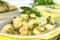 Green Asparagus and Chicken Fricassee Stock Images