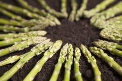 Green Asparagus Circle Stock Images
