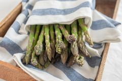 Asparagus. Fresh Asparagus. Green Asparagus. Bunches of green asparagus stock photos