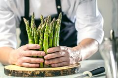 Green asparagus kept in men`s Chef cook hands royalty free stock images