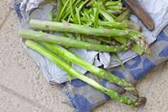 Green asparagus peeling Stock Photos