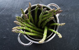Green asparagus in the pot Stock Photography