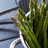 Green asparagus in the pot Stock Images