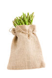 Green asparagus in pouch Stock Photo