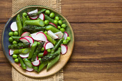 Green Asparagus Radish Pea Salad Stock Photography