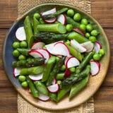 Green Asparagus Radish Pea Salad Stock Images