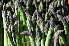 Green asparagus shoots Royalty Free Stock Images