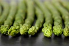 Green Asparagus on Slate Stock Image