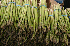Green Asparagus spears, Asaparagus officinalis Stock Photo