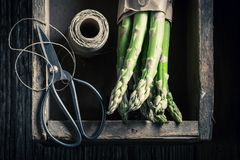 Green asparagus and string in a wooden box. Closeup of green asparagus and string in a wooden box stock image