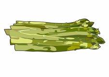 Green asparagus. Vector illustration of a spring vegetable, EPS 10 file Vector Illustration