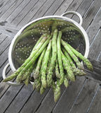 Green asparagus vegetable in a bowl Royalty Free Stock Image