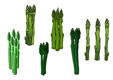 Green asparagus veggies with fleshy spears Royalty Free Stock Photos