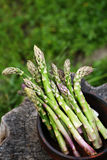 Green asparagus in a wooden bowl. In rustic style Stock Photos