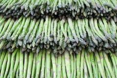 Green asparaguses Stock Image