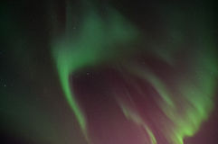 Green Aurora. Lights up the sky Stock Images