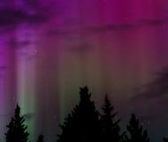 Green Aurora Strobe Light. Green aurora throws strobe light into the night sky Royalty Free Stock Photos