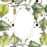 Green autumn leaf birch. Leaf plant botanical garden floral foliage. Isolated illustration element. Aquarelle leaf for background, texture, wrapper pattern royalty free illustration