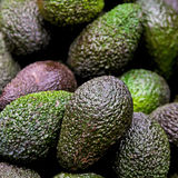 Green avocado Royalty Free Stock Photography