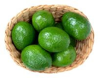 Green avocado Royalty Free Stock Image