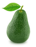 Green avocado with leaf isolated on a white Stock Images