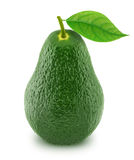 Green avocado with leaf isolated on a white Royalty Free Stock Photos