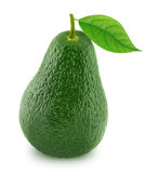 Green avocado with leaf isolated on a white Stock Photography
