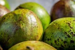 Green avocado skin photo taken in bogor jakarta indonesia Royalty Free Stock Photo