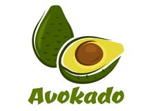 Green avokado fruit sketch Royalty Free Stock Photos