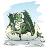 Green baby dragon piping from an egg. On sky background Stock Photography