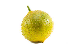 Green baby jackfruit isolated on white background.fruit for health. And raw food Royalty Free Stock Photo