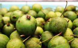 Green baby kiwi berries Royalty Free Stock Images