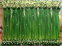 Green backdrop flowers arrangement Royalty Free Stock Image