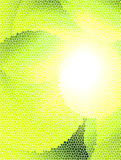 Green background. With textures  and  ray  of light. abstract  illustration Stock Photography