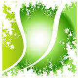Green background. Green floral artwork with background Stock Photography