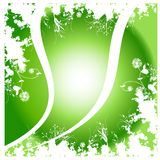 Green background. Green floral artwork with background Stock Image