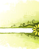 Green background. With floral design element Royalty Free Stock Photography