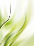 Green background stock illustration