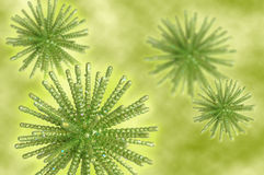 Green background. Green sparkling snowflakes and stars Stock Images