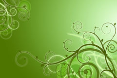 Green background Stock Images