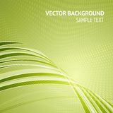 Green background Royalty Free Stock Photography