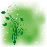 Green background Stock Image